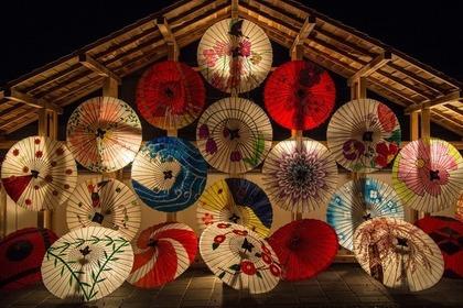 たくさんの和傘