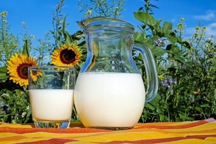コンビニのホットカフェラテに使うミルク