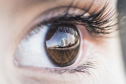 こげ茶色の目