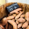 Small thumb sweet potatoes 5fe1d74549 1280