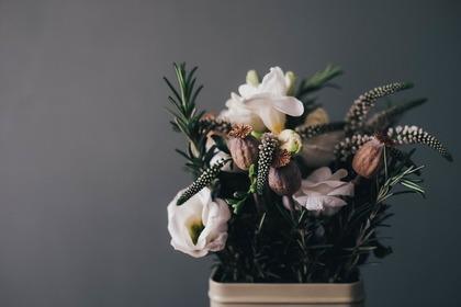 暗い背景の花瓶