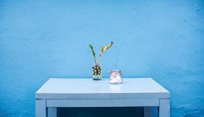 白いテーブルに飾られた植物