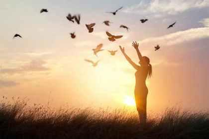 鳥に手を伸ばす女性