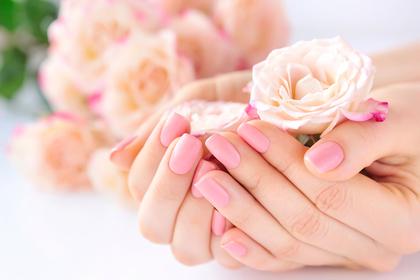 ピンクのバラを抱えた手
