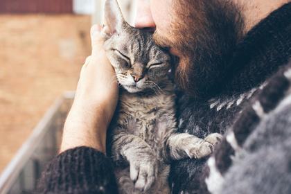 猫を抱く男性