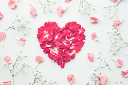花びらのハート